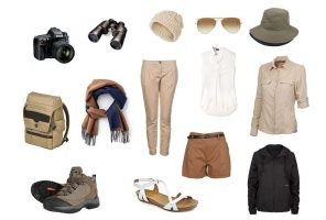 safari-basics-women